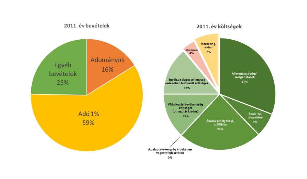 2011 év bevétel és kiadás-01