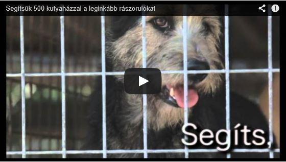 KutyahidegKoncert_Youtube